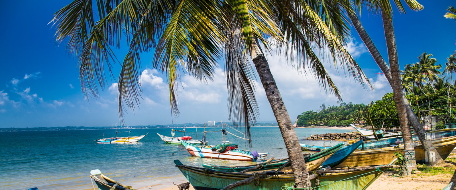 sri lanka beach holiday packages